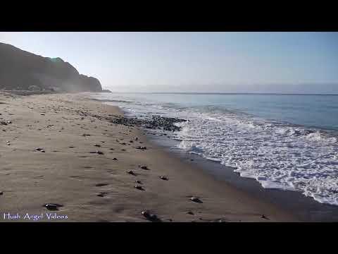 Point Mugu State Beach Campground