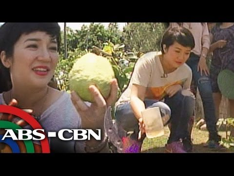 Kris Aquino's adventure trip in La Union