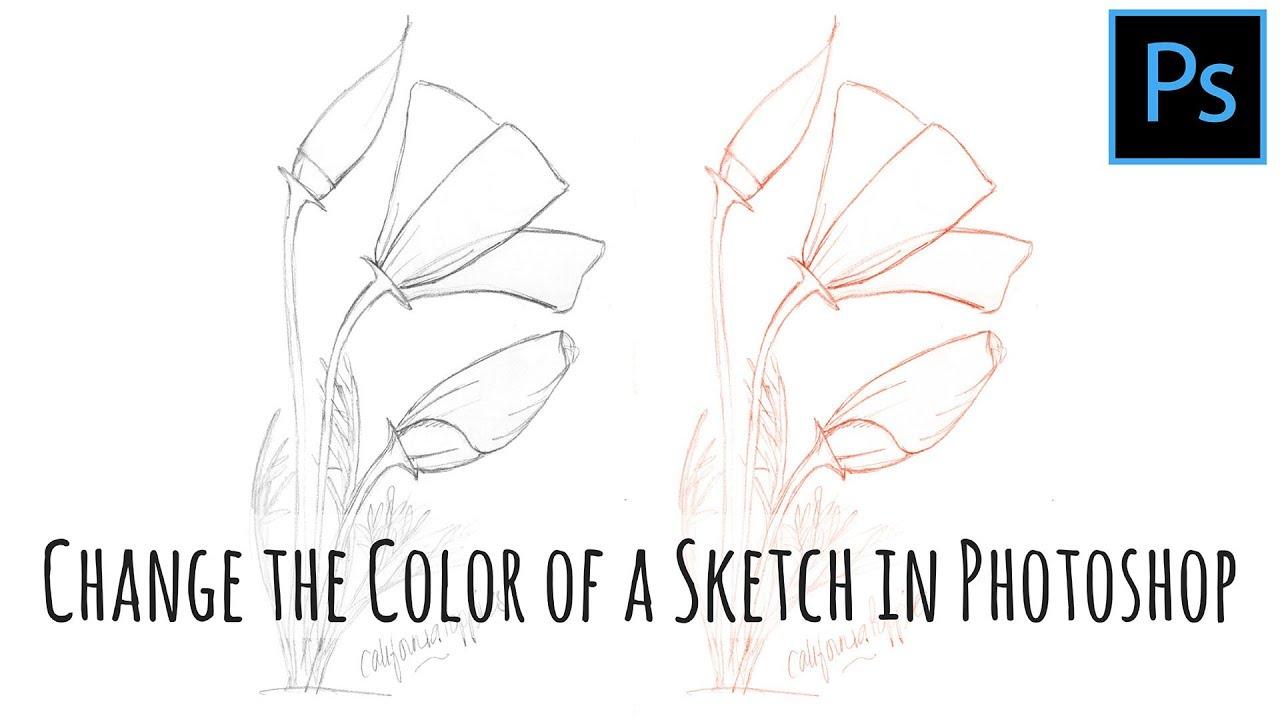 splashlings how to color change