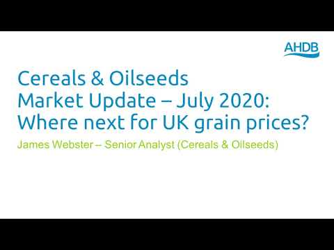 Cereals & Oilseeds Update – July 2020 - Where Next For UK Grain Prices?