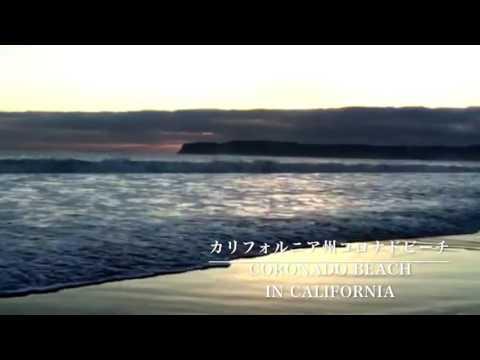 🐚【波動エナジー💫ヒーリング】〜Coronado Beach In California 〜**Spiritual places**