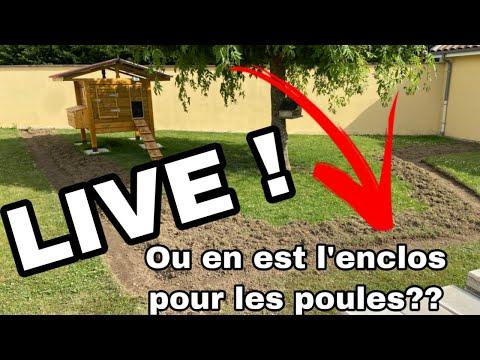 live---avancement-de-l'enclos-pour-les-poules---brico-seb