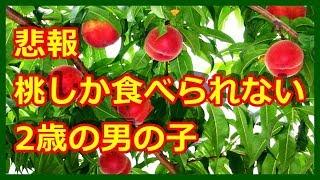 【悲報】 桃が好きなんじゃない。桃しか食べられない2歳の男の子