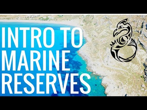 Marine Protected Areas Introduction - INDEPENDENCE AT SEA Video Log 13