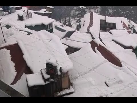 Snowfall continues; ground report from Shimla