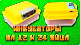 Инкубаторы на 12 и 24 яйца (обзор новых моделей)