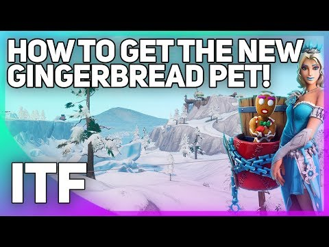 Getting the NEW Gingerbread Man Pet! (Fortnite Battle Royale) thumbnail