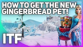 Getting the NEW Gingerbread Man Pet! (Fortnite Battle Royale)
