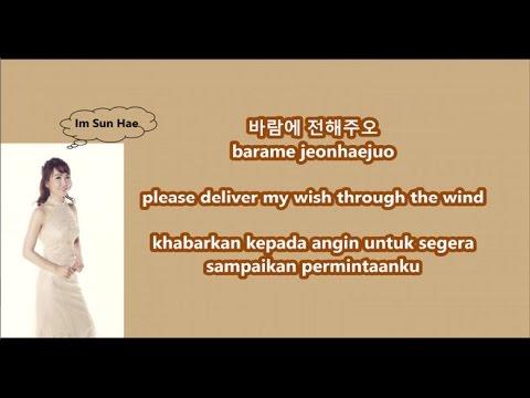 Im Sun Hae - Will Be Back with Malay | Eng | Han | Rom lyrics