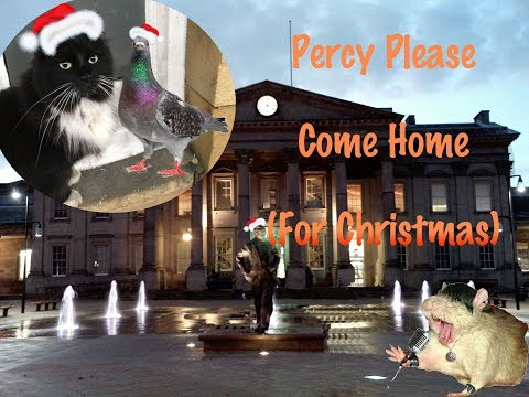 Percy Please Come Home (For Christmas)