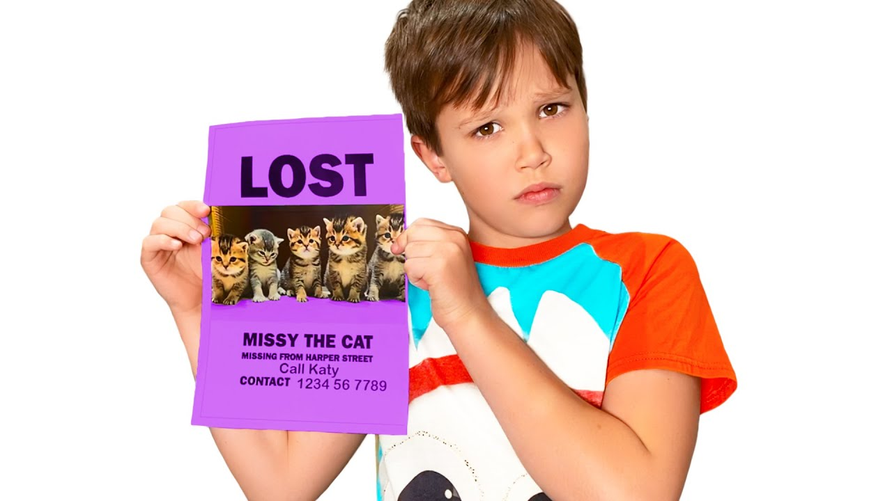 У Кати Пропали котята