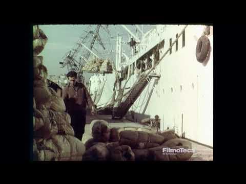 150 anys del Port de Barcelona: 150 anys avançant junts - Màster