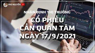 Nhận định thị trường - Cổ phiếu cần quan tâm ngày 17/9/2021