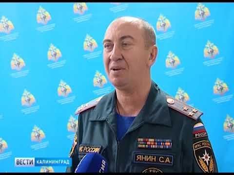Штрафы за поджог травы в Калининградской области вырастут в несколько раз