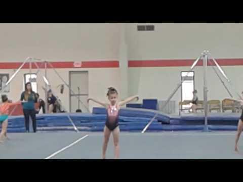 AAU Gymnastics State Championship - Vault