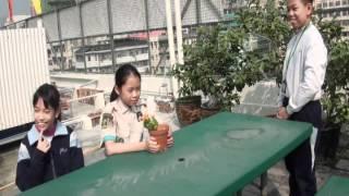 SID2012 - 深水埔街坊福利會小學 - 小敏的遭遇