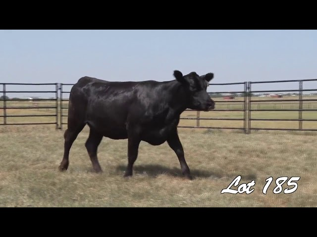 Pollard Farms Lot 185