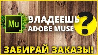 Заказ Adobe Muse