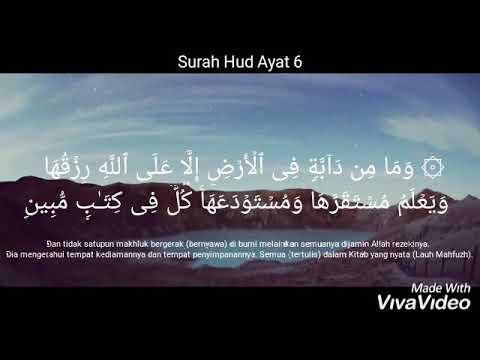 Surah Hud Ayat 6 Ismail Rizal M Youtube