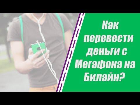 Как перевести деньги с Мегафона на Билайн? Инструкция как переводить