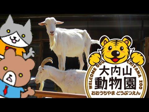 大内山動物園に兄と妹が行って動物に癒されただけの動画