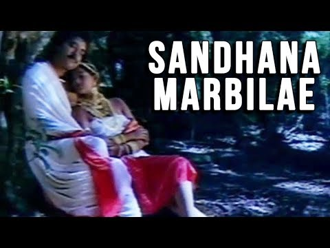 Sandhana Marbilae Full Song | நாடோடி தென்றல் | Nadodi Thendral Video Song | Ilaiyaraja Songs