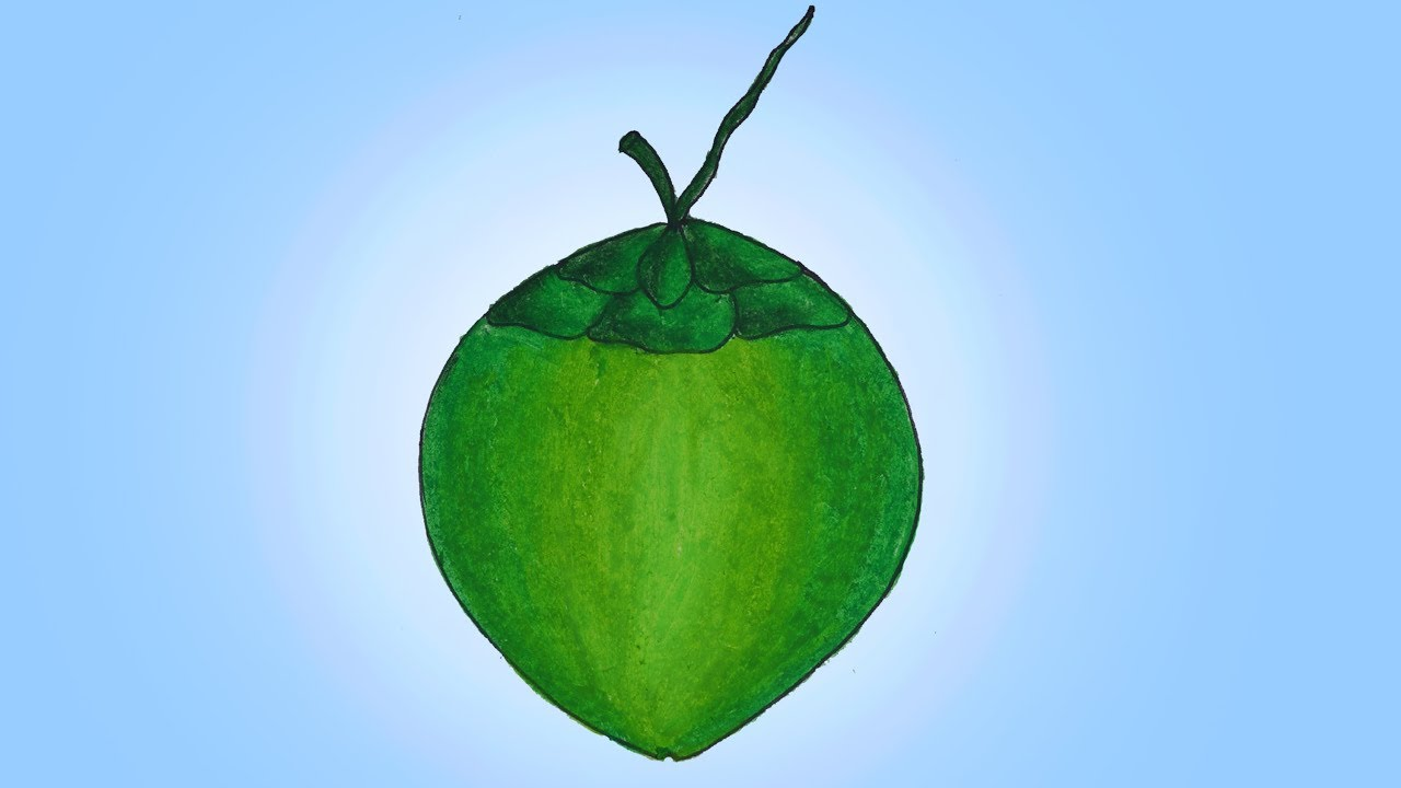 How To Draw Green Coconut Easy And Simple Drawing