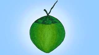 How to draw Green Coconut easy and simple, Green Coconut drawing
