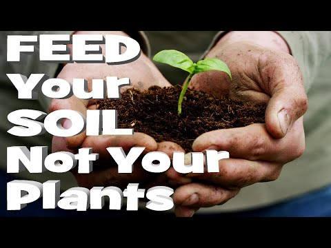 PERMACULTURE HEALTHY SOIL SCIENCE | Organic Gardening Advice for Fertilizer NPK