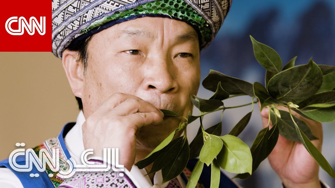 CNN عربية:كيف يعزف هذا الرجل الموسيقى بأوراق الشجر؟