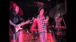 Ladybirds Dziewica Kwiaty Słońca koncert 1994