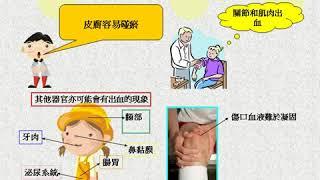 Publication Date: 2020-04-16   Video Title: #14順德聯誼總會何日東小學上午校 隊伍六