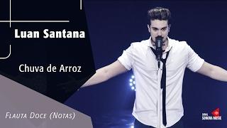 Baixar Chuva de Arroz - Luan Santana - Flauta Doce (Notas)