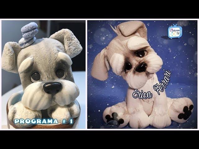 """NICRON TV Como modelar perrito """"Bigotes"""" - Érica Ferrari"""