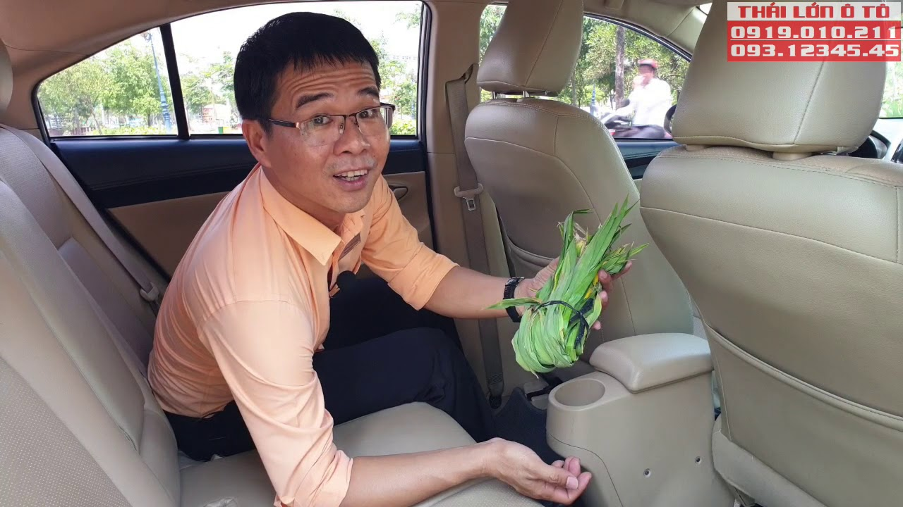 Chăm Sóc Xe   Cách xử lý MÙI HÔI KHÓ CHỊU trong xe ô tô   Thái Lớn