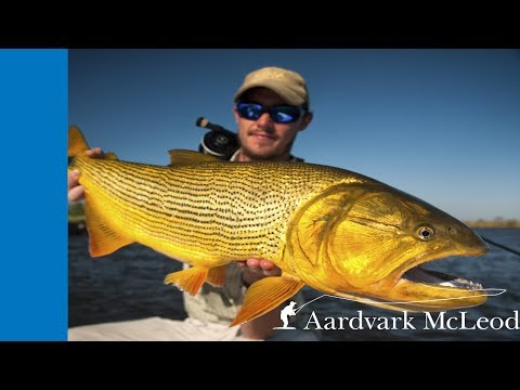 Fishing Pira Lodge, Argentina, for golden dorado on the fly