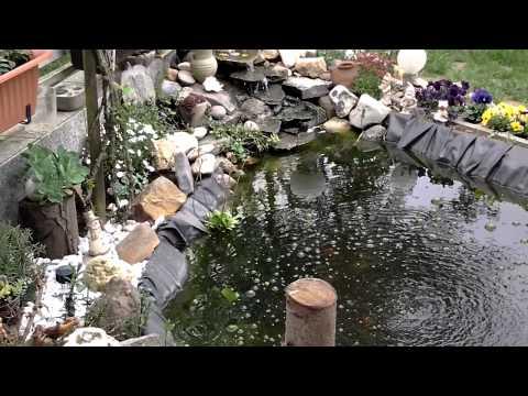 Teich und steingarten for Steingarten teich