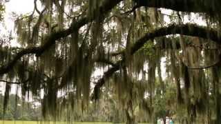 Musgrove Plantation Yoga Retreat - Full Length Video