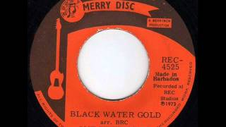 The Blue Rhythm Combo -- Black Water Gold
