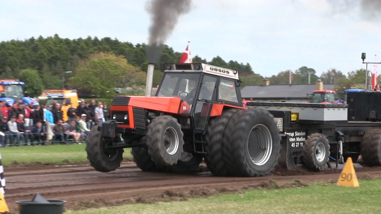 Ursus 1201 & Ursus 1614 na  zawodach Tractor Pulling w Hjørring