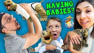 WE'RE HAVING MORE BABIES!  FV Family SCREAMINGLY FUNNY Vlog
