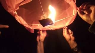 Sky Lanterns matheson hammock park