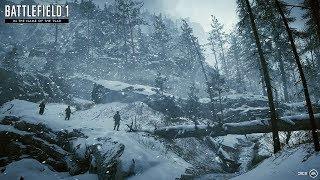 Battlefield 1 — Перевал Лупковски (DLC «Во имя царя») · СТРИМ · [PS4 Pro]