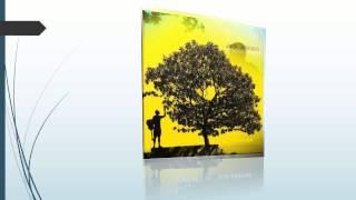 Descarga la discografia de Jack johnson [mega] [2013]