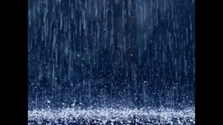 Питерский дождь...
