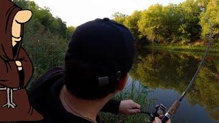 Бешеный клёв Окуня на живца с берега на донки Судак на донку с берега летняя рыбалка на реке Сок