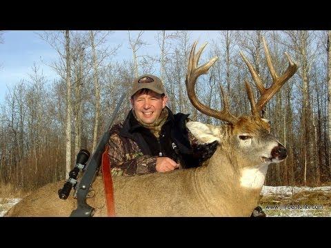 Hunting Whitetail Deer Alberta Canada