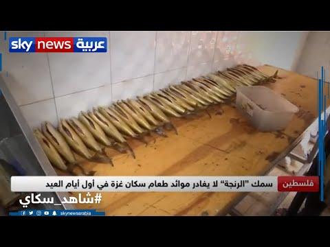 أسواق غزة تحضر أكلات مرتبطة حصراً بأجواء العيد  - نشر قبل 4 ساعة