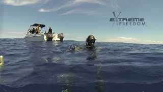 William Trubridge Spearfishing Kingie -34mts