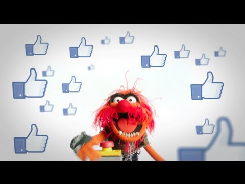 Animal: The Muppets On Facebook   The Muppets Fan-A-Thon   The Muppets